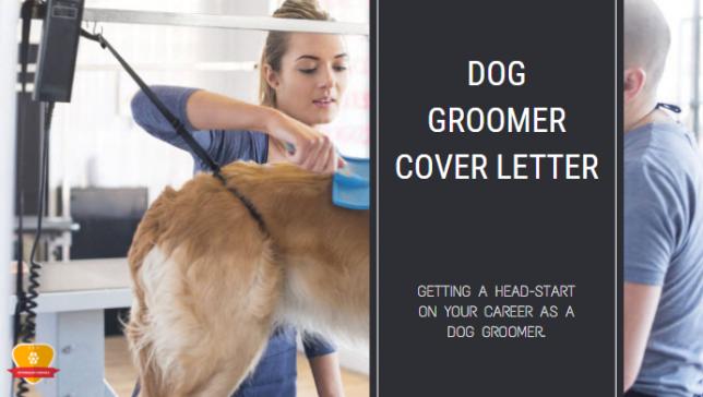 Dog Groomer Cover Letter