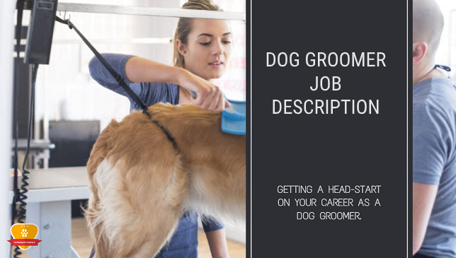 Dog Groomer Job Description