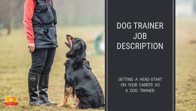 Dog Trainer Job Description