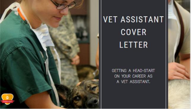 Vet AssistantCover Letter
